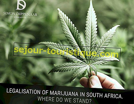 Was Sie über die Legalisierung von Marihuana in Südafrika wissen sollten