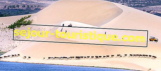 Những đụn cát đỏ và trắng ngoạn mục của Mũi Né, Việt Nam