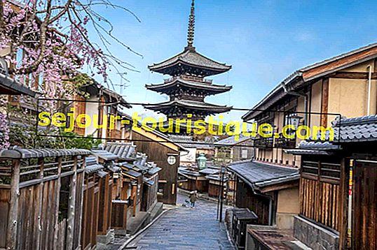 Les meilleures choses à faire et à voir à Kyoto
