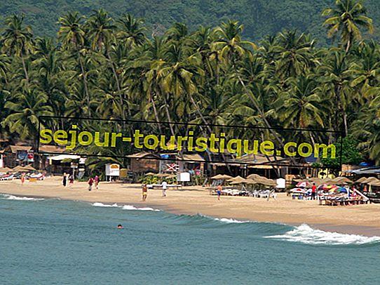 Le Top 10 Des Choses À Voir Et À Faire À La Plage De Palolem, Goa