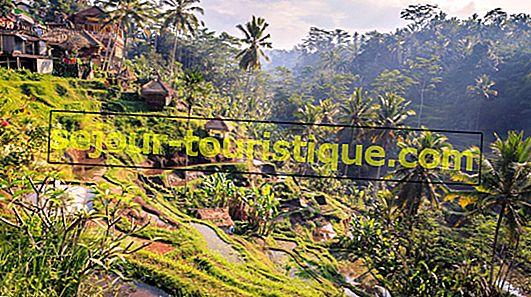 15 địa điểm đẹp nhất để đến thăm ở Indonesia