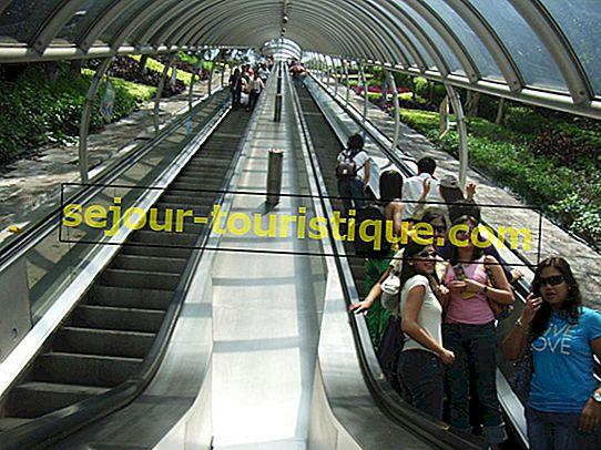 香港で世界最長のエスカレーターに乗る