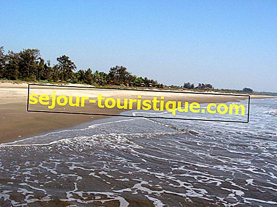 Die schönsten Strände in Goa zu besuchen