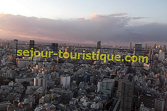 Der komplette Leitfaden für Ebisu, Tokio