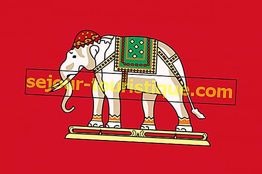 Hoe de olifant het nationale symbool van Thailand werd