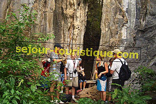 Les meilleurs sentiers de randonnée pour les amateurs d'aventure à Chiang Mai