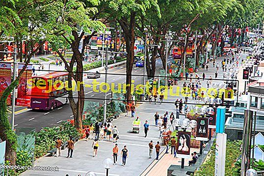 シンガポール、オーチャードロードのベスト10ブランチスポット