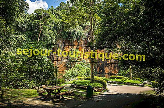 Les 10 plus beaux jardins et parcs de Singapour