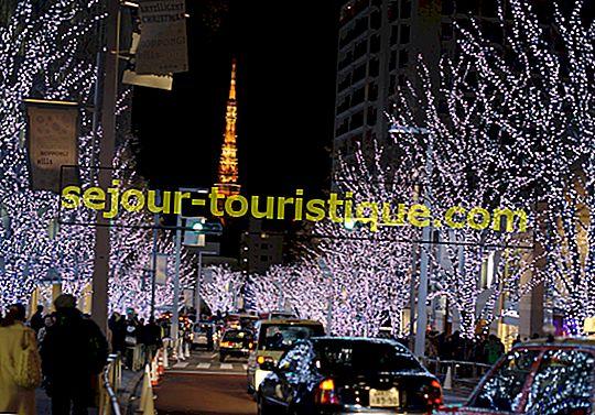 Les meilleurs bars à Roppongi, Tokyo