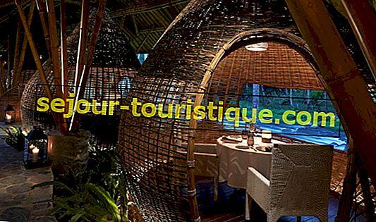 10 nhà hàng tốt nhất ở Ubud