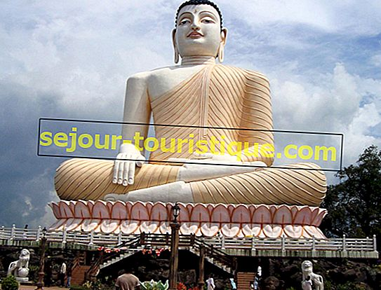 Top 10 des choses à faire à Bentota, Sri Lanka