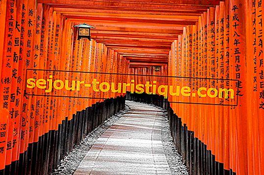 ประวัติโดยย่อของ Fushimi Inari Taisha ศาลเจ้าที่สำคัญที่สุดของเกียวโต