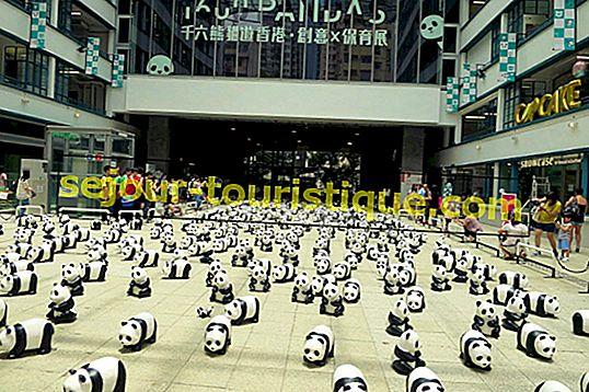 Perkara Yang Terbaik di Kowloon, Hong Kong