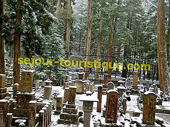 10 raisons de réserver un voyage d'hiver au Japon