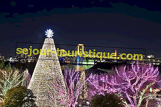 วิธีการฉลองคริสต์มาสในญี่ปุ่น