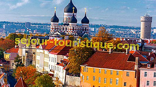 15 Hal Terbaik untuk Dilakukan di Tallinn, Estonia