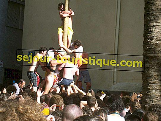 スペインで最も厄介な祭り、ラトマティーナについて知らなかった10のこと