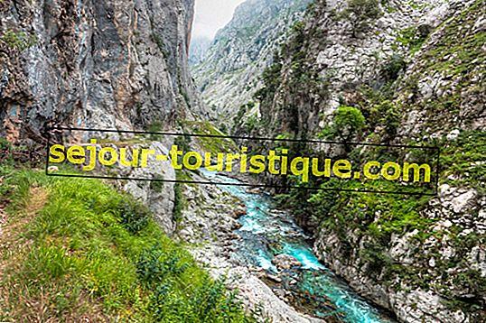 10 điểm hàng đầu để đi bộ và leo núi ở Tây Ban Nha