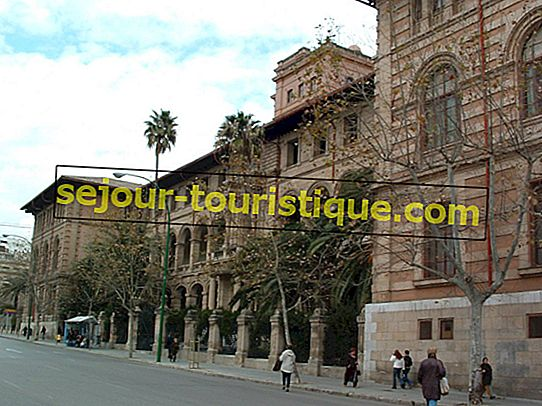 5 Universitas Teratas Di Barcelona