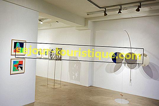 ピッツバーグのベスト10現代美術ギャラリー