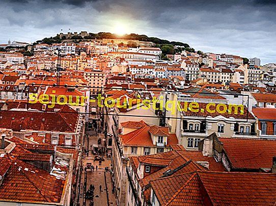 Temukan Restoran Terbaik di Lisbon