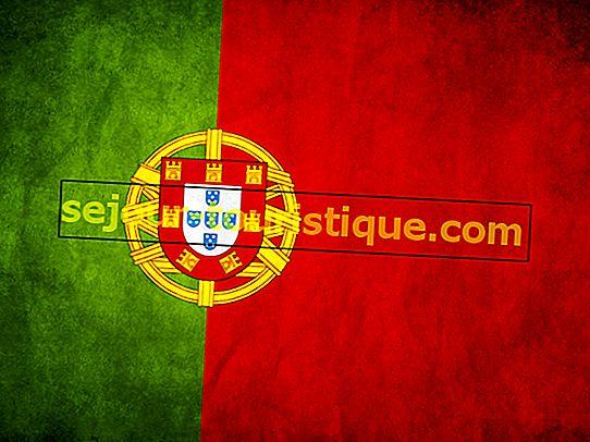 8 faits intéressants sur le drapeau portugais