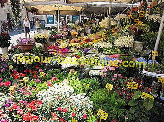 Les meilleurs marchés à Florence, Italie