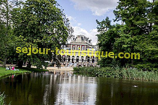 Die schönsten Parks in Amsterdam