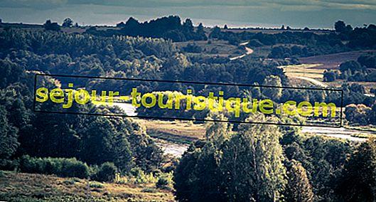 7 Fakta Menarik Tentang Bahasa Lituania