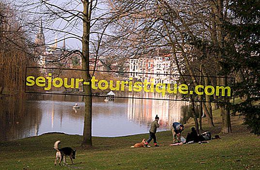 8 dingen om te doen en te zien in Elsene