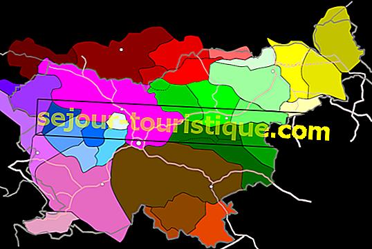 9 ข้อเท็จจริงที่น่าสนใจเกี่ยวกับภาษาสโลวีเนีย