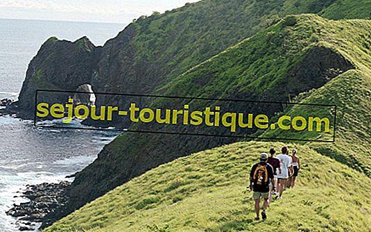Die Top 10 Dinge zu sehen und zu tun in Costa Adeje