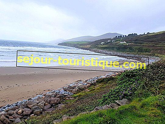 11 redenen waarom u het Ierse schiereiland Dingle moet verkennen