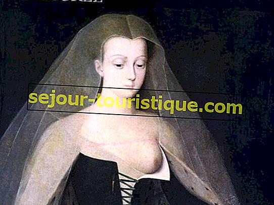 Agnès Sorel dan History of Toplessness