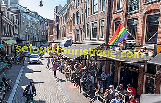 Die besten LGBTQ-Bars in Amsterdam
