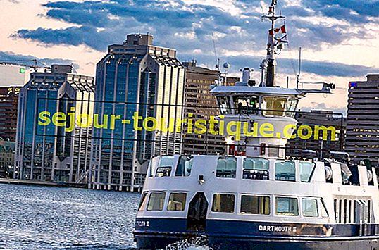 20 Must-Visit Tarikan di Halifax, Nova Scotia