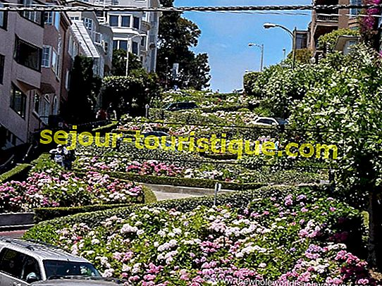 The 10 Must-See Neighborhoods di San Francisco