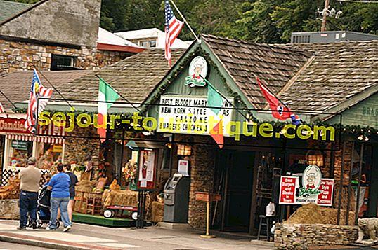 Les 10 meilleurs restaurants à Pigeon Forge, Tennessee