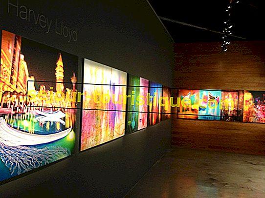 Die besten Kunstgalerien in Las Vegas