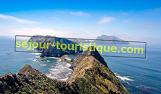 Les meilleures îles à visiter au large de la côte californienne
