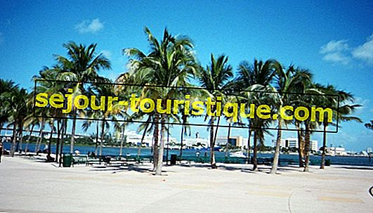 20 Objek Wisata yang Wajib Dikunjungi di Miami