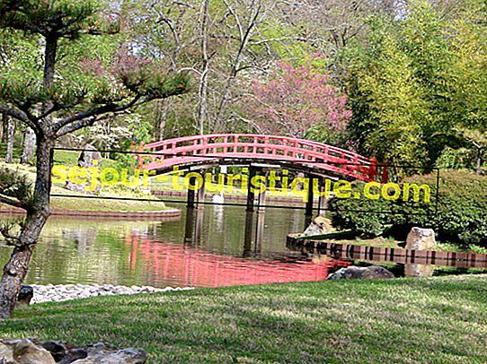 Năm công viên đẹp nhất ở Memphis