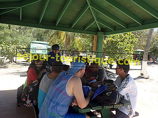 8 lustige Dinge zu sehen und zu tun in La Parguera, Puerto Rico