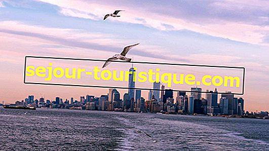 NYC Guide: Die Top 10 Fotogalerien in New York