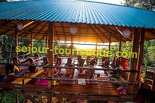 Những nơi tốt nhất để tập Yoga ở Costa Rica