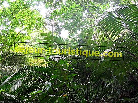 20 attractions incontournables en République dominicaine