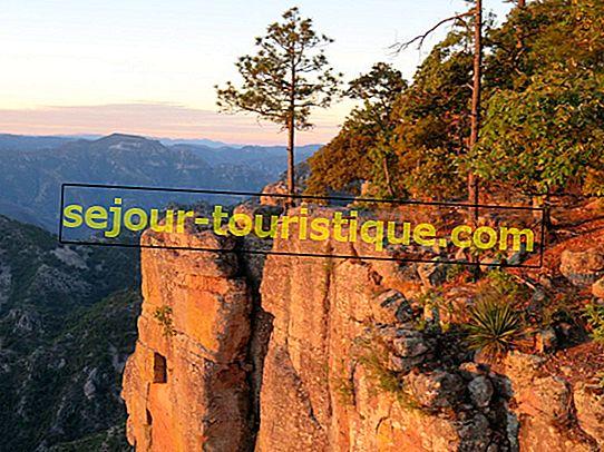 15 Objek Wisata yang Harus Dikunjungi di Copper Canyon, Meksiko