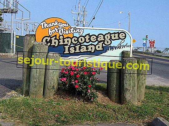 Les 10 meilleurs restaurants à Chincoteague, Virginie
