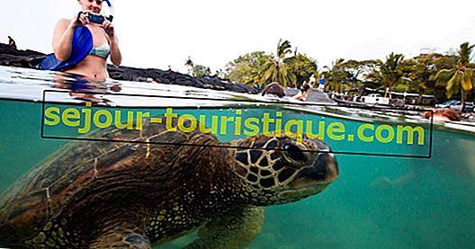 10 Hal Terbaik Untuk Dilakukan Dan Lihat Di Kapolei, Hawaii