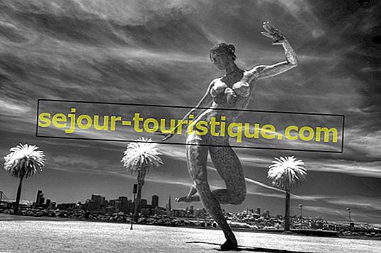 6 Inseln zum Erkunden von San Francisco